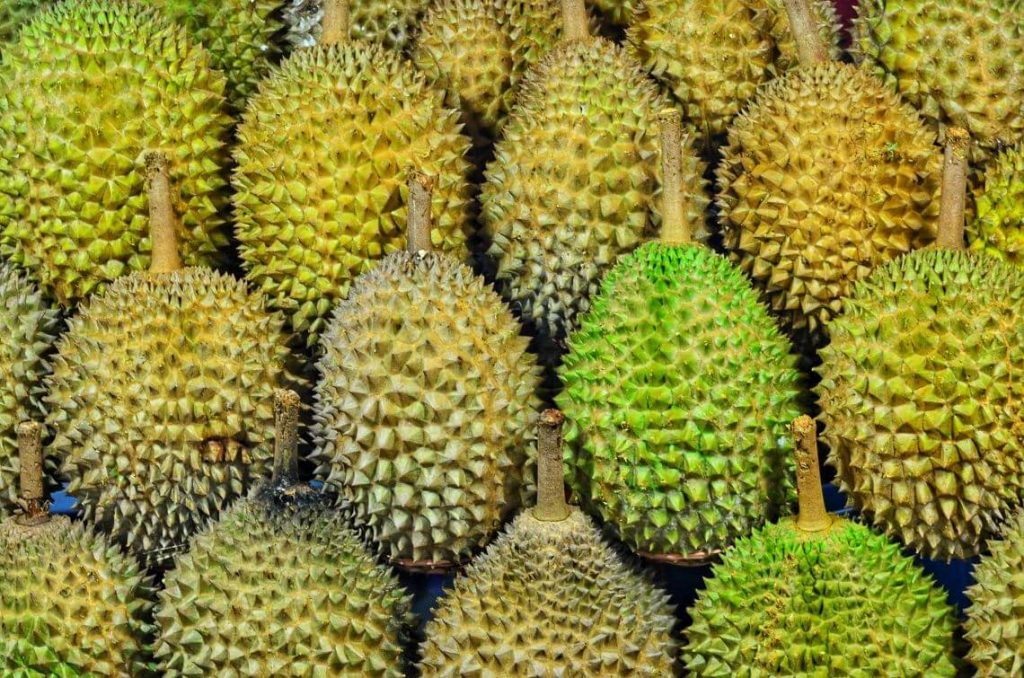Ultimate Guide to Bangkok | Durian fruit stand in Bangkok, Thailand