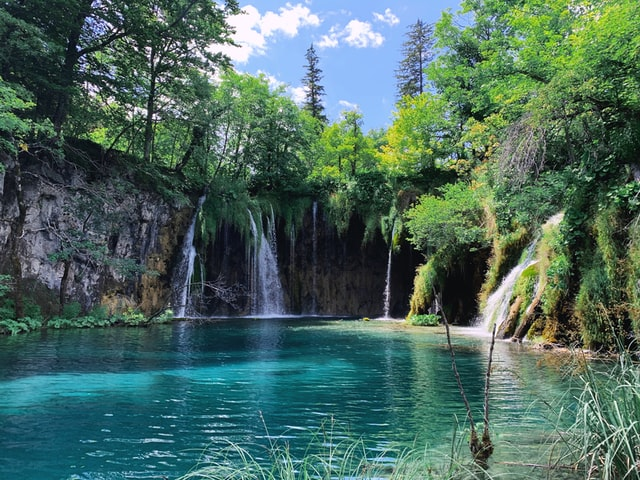 A series of small waterfalls flowing into a beautiful turquoise lake surrounded by a verdant forest.