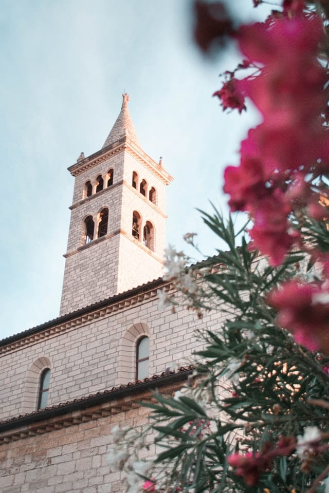 A beautiful view of a stone tower in an old town in Croatia with a bougainvillea tree in the foreground of the frame.