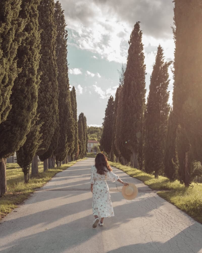 A woman walking down an empty road lined with cypress trees on the Istrian peninsula in Croatia during sunset.
